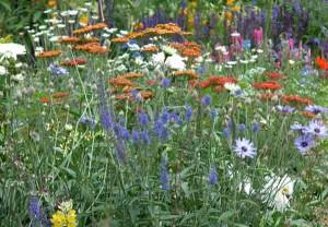 Garden Planting Styles - Cottage Garden Planting