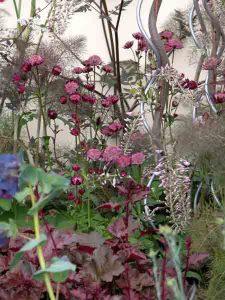 Garden Planting Styles - Astrantias in a courtyard garden