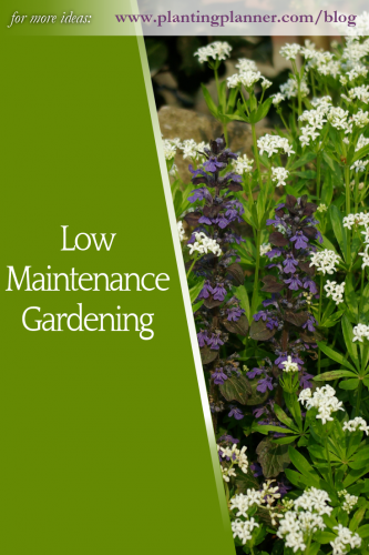 Low Maintenance Gardening - from Weatherstaff garden design software