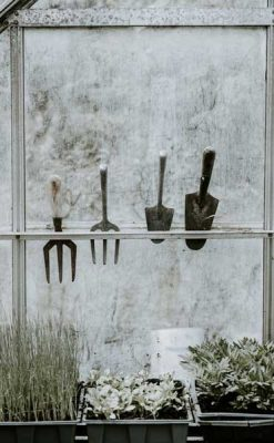 Garden tools - low maintenance gardening