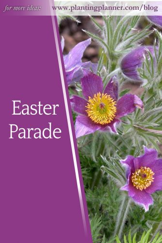 Easter Parade - from Weatherstaff garden design software
