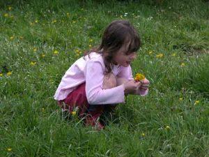 Child in family friendly garden