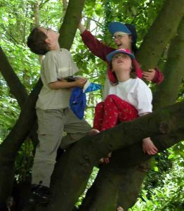 Children in tree family friendly garden