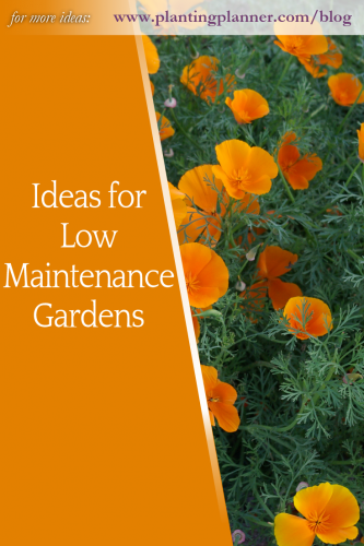 Ideas for Low Maintenance Gardens - from Weatherstaff garden design software