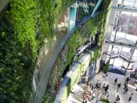 The living wall at Siam Paragon, Bangkok - from Weatherstaff PlantingPlanner