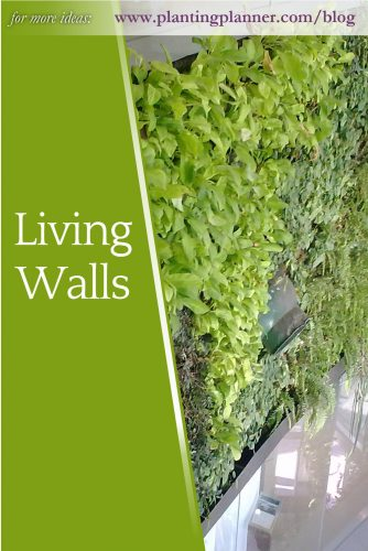 Living Walls - from Weatherstaff garden design software