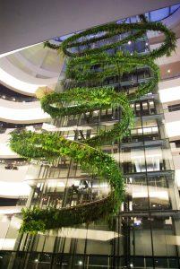 Rainforest Chandelier - garden design, landscape design