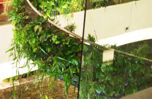 Rainforest chandelier close-up, from garden design blog