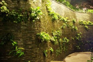 curved wall landscape design software