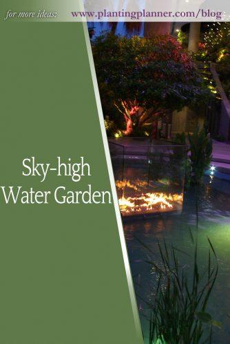 Sky-high Water Garden - from Weatherstaff garden design software