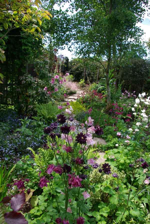 Spring flowers landscape garden ideas