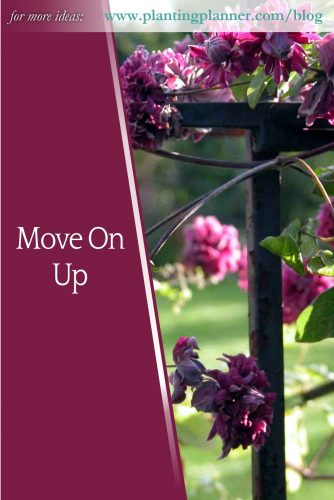 Move On Up - from Weatherstaff garden design software