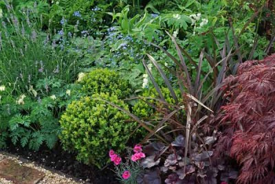 Planting plan for a show garden