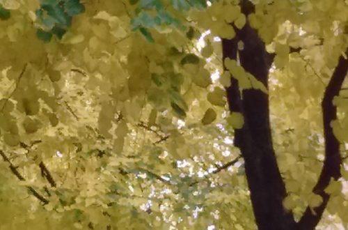 Autumn Leaves - Weatherstaff PlantingPlanner