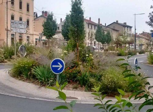 Roundabout Planting Plans