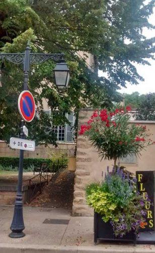 Street planting - border ideas
