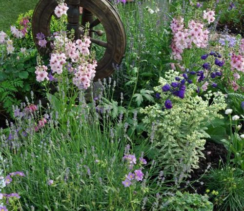 Informal garden border