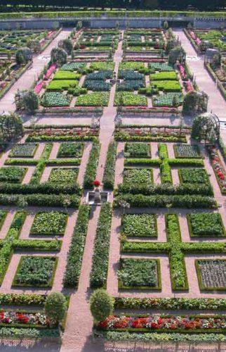 Formal gardens at Villandry