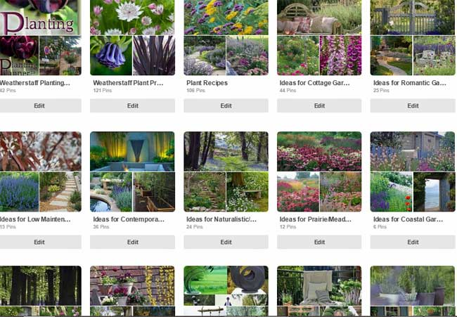 Follow Weatherstaff PlantingPlanner at uk.pinterest.com/plantingplanner