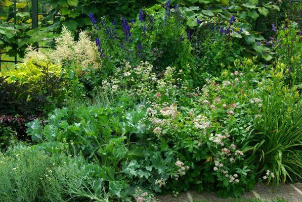 Flowers in a Cottage garden style from Weatherstaff garden design software