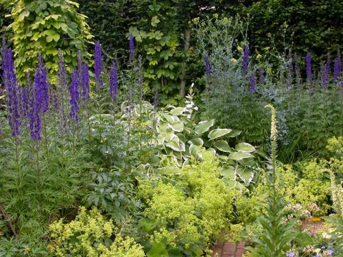 Spires and mounds work well in a planting plan. - garden border ideas from Weatherstaff garden design software