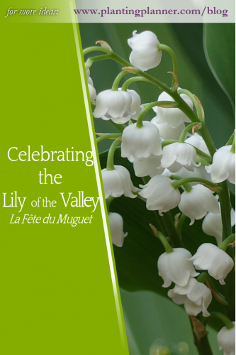 Celebrating the Lily of the Valley - from Weatherstaff garden design software