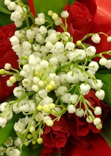 Sprays of lily of the valley - spring flowering garden border idea