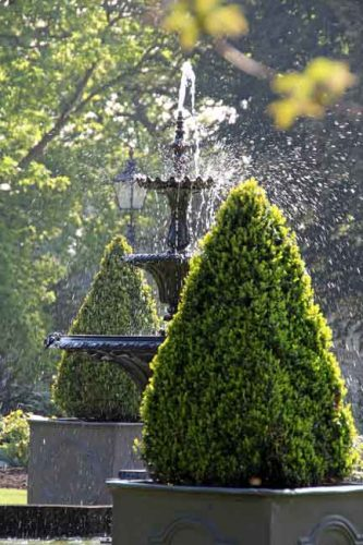 Topiary - formal garden ideas from Weatherstaff landscaping design software