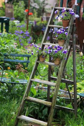 Ladder of plants - inspirational gardening ideas from Weatherstaff garden design software