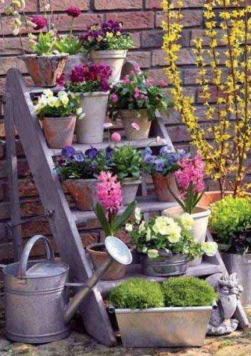 Ladder of plants - garden ideas from Weatherstaff