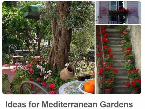 Mediterranean Garden @ uk.pinterest.com/plantingplanner