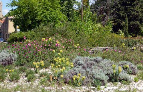 A Mediterranean planting plan - Weatherstaff garden design software