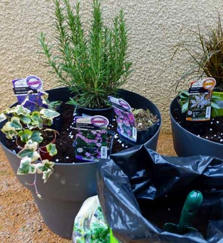 Arranging pots - guide to container planting from Weatherstaff landscape design software