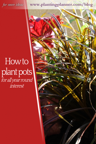 How to plant pots for all year interest - from Weatherstaff garden design software