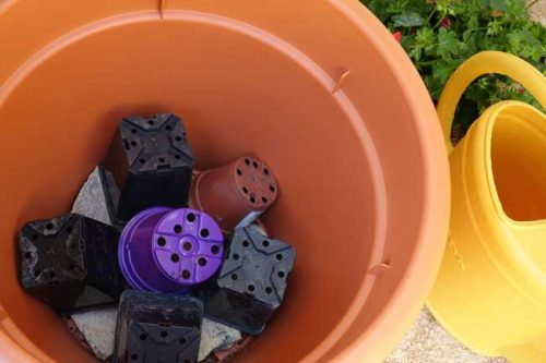 Recycle old pots in containers for all year round interest