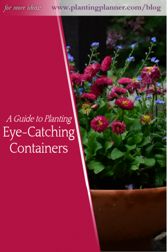 A guide to planting eye-catching containers - from Weatherstaff garden design software