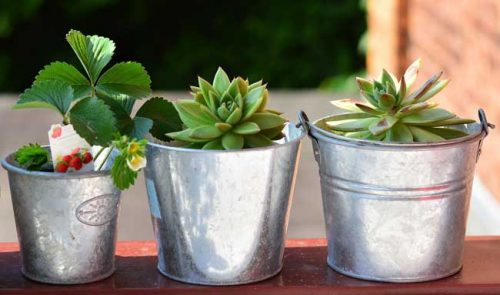 Metal pots from the Weatherstaff garden design software