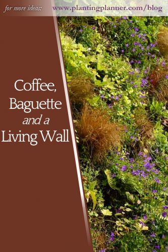 Coffee, baguette and a living wall - from Weatherstaff garden design software