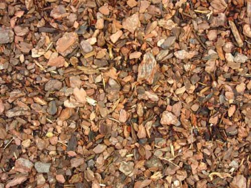 Apply chipped bark to borders as a spring mulch