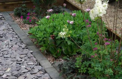 Pebbles, slate and gravel can be used as an inorganic mulch in spring