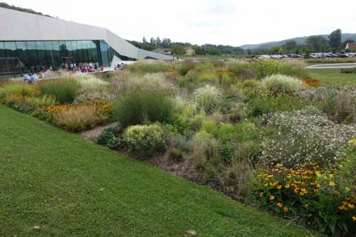 Green lawns outside Lascaux Centre - from Weatherstaff garden design software