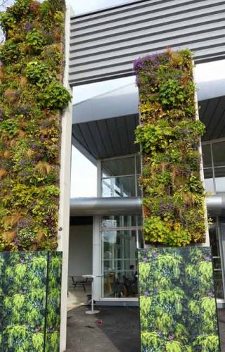 Living wall tapestries - Weatherstaff garden design software