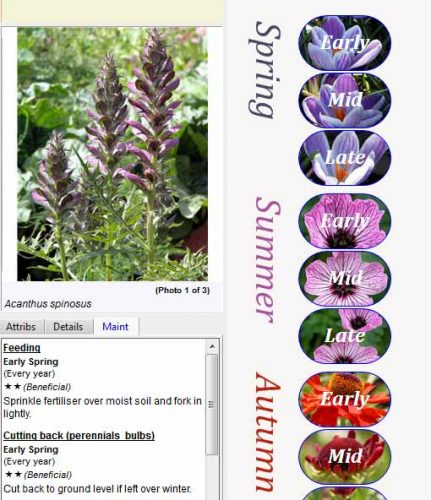 Weatherstaff PlantingPlanner displays maintenance instructions for individual plants
