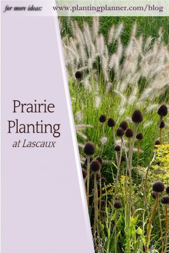 Prairie Planting at Lascaux - from Weatherstaff garden design software