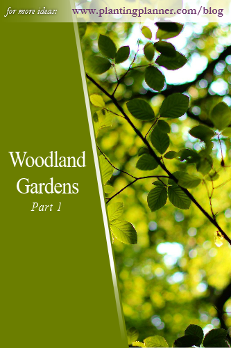 Woodland Gardens Part 1 - from Weatherstaff garden design software